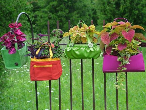 Original-Nancy-Ondra_unique-container-garden-purses_s4x3_lg-600x450