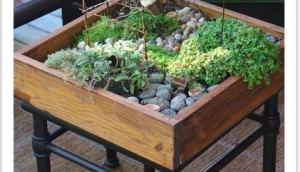 miniature-garden-