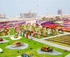 theblogfarm._com_cool-places-to-see-flowers-dubai-miracle-park-630x417