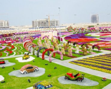 theblogfarm._com_cool-places-to-see-flowers-dubai-miracle-park-630x417