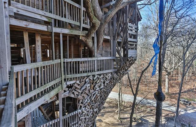 Inside The World Biggest Tree House Creative Spotting