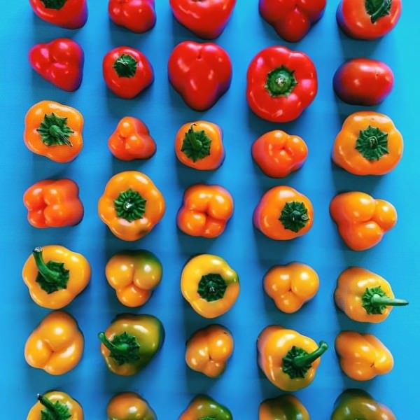 Gradient Food Photography By Brittany Wright Creative