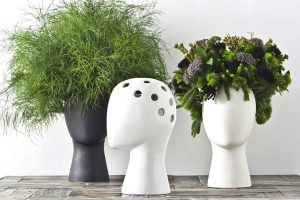 Putting Plants in a Head-shaped Vase