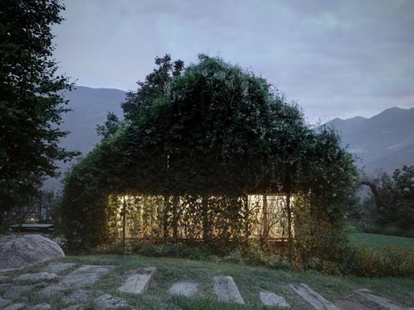 Green Box Architecture + Interiors