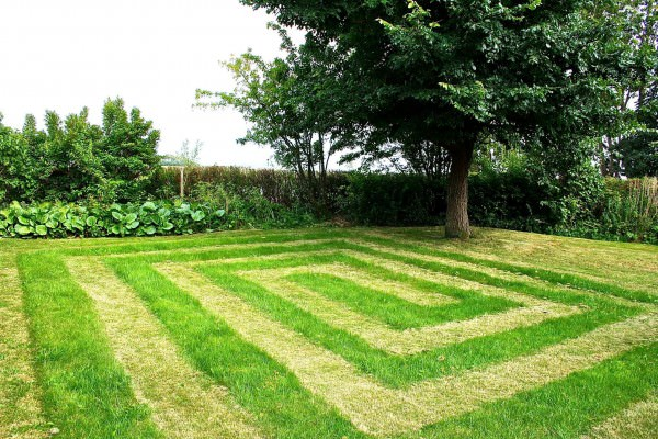 Making Fun of Cutting Lawn Funny