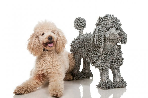 Recycled Bicycle Into Man's Best Friend Sculptures By Nirit Levav Animals + Nature Art + Graphics Bike Sustainability