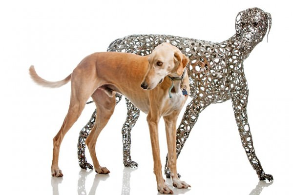 Recycled Bicycle Into Man's Best Friend Sculptures By Nirit Levav Animals + Nature Art + Graphics Sustainability