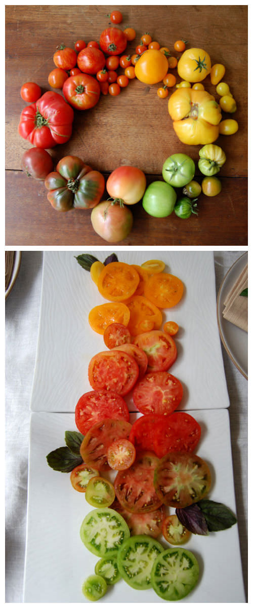 Rainbow Tomatoes Creative Fooding