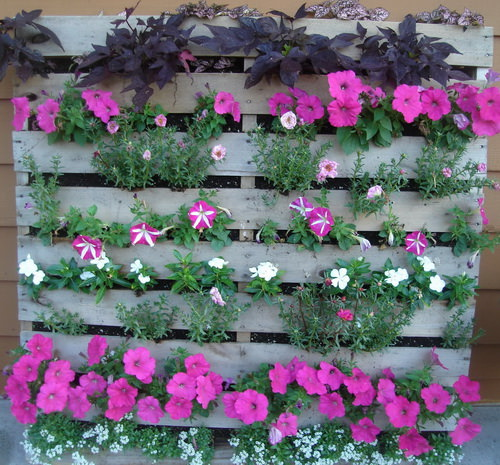 10 Diy Garden Ideas For Using Old Pallets: 10 Amazing Gardens Made With Repurposed Wooden Pallets