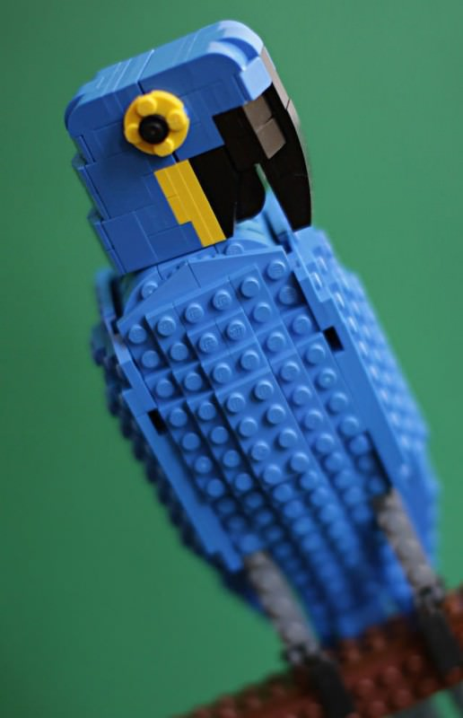 Lego Birds by Tom Poulsom Animals + Nature Art + Graphics
