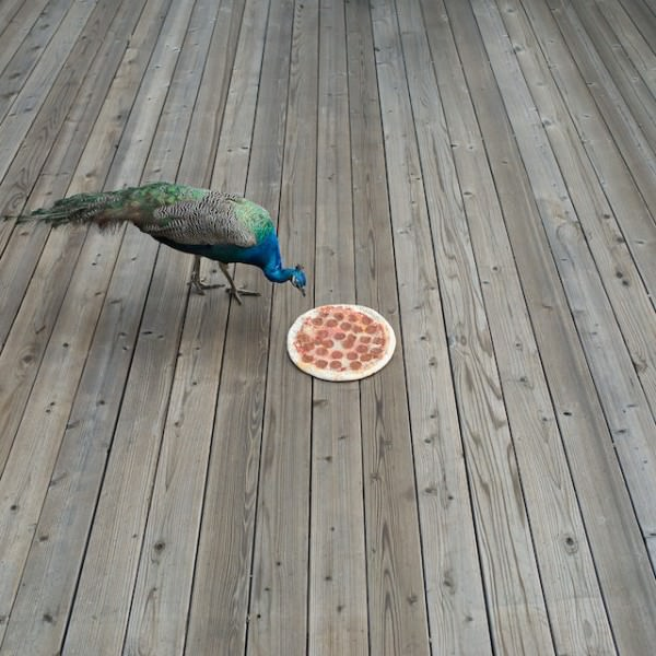 Pizza in the Wild by Jonpaul Douglass Photography