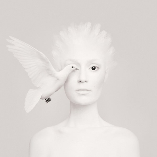 Animal Eye Portraits By flóra Borsi Photography