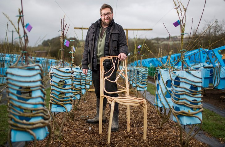 The Man Who Grows Natural Chairs Animals + Nature Architecture + Interiors