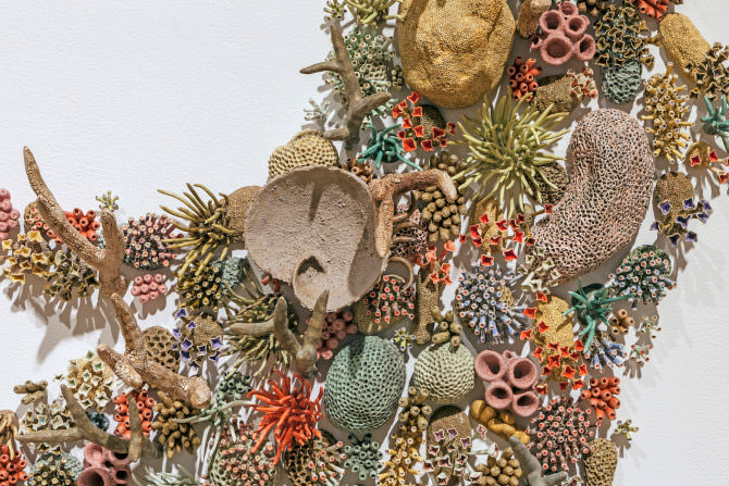 Sculpted Coral Reef Installation by Courtney Mattison Art + Graphics
