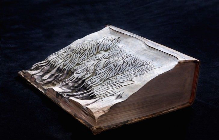 Snow on Old Carved Books by Guy Laramée Art + Graphics