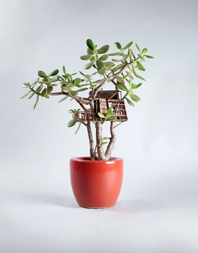 Tiny Huts in Houseplants Art + Graphics