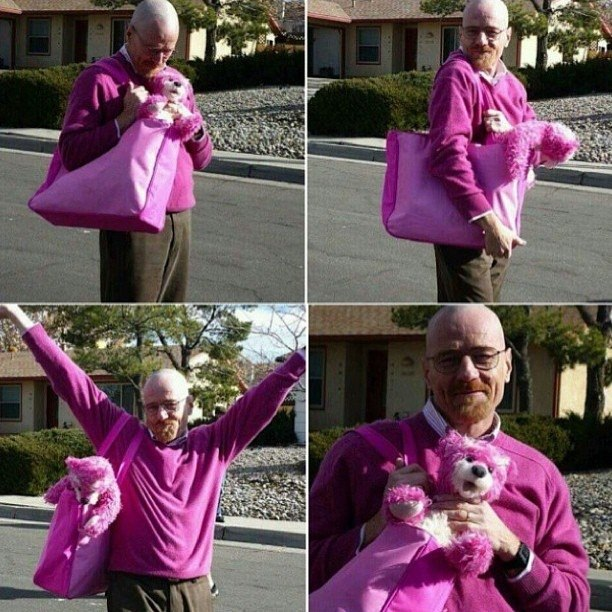 Aaron Paul Posted The Most Delightful Photos Of Walter White On Instagram Photography