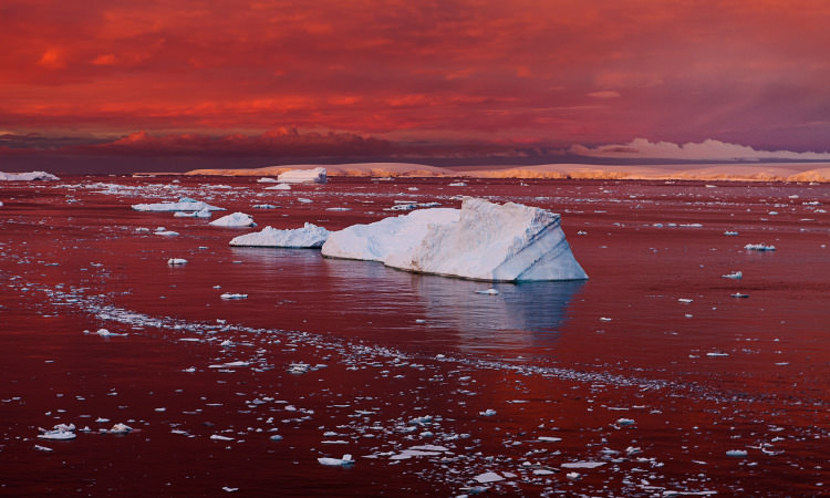 Why What's Happening in Antarctica Won't Stay in Antarctica | Geek Universe