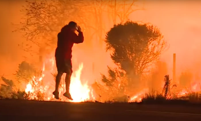 Watch This Anonymous Hero Saving A Bunny From Wildfire And Then Just Vanishing Into The Dark Funny