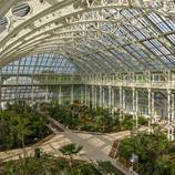 The Hugest Victorian Glasshouse in the World Finally Restored – Fubiz Media Design