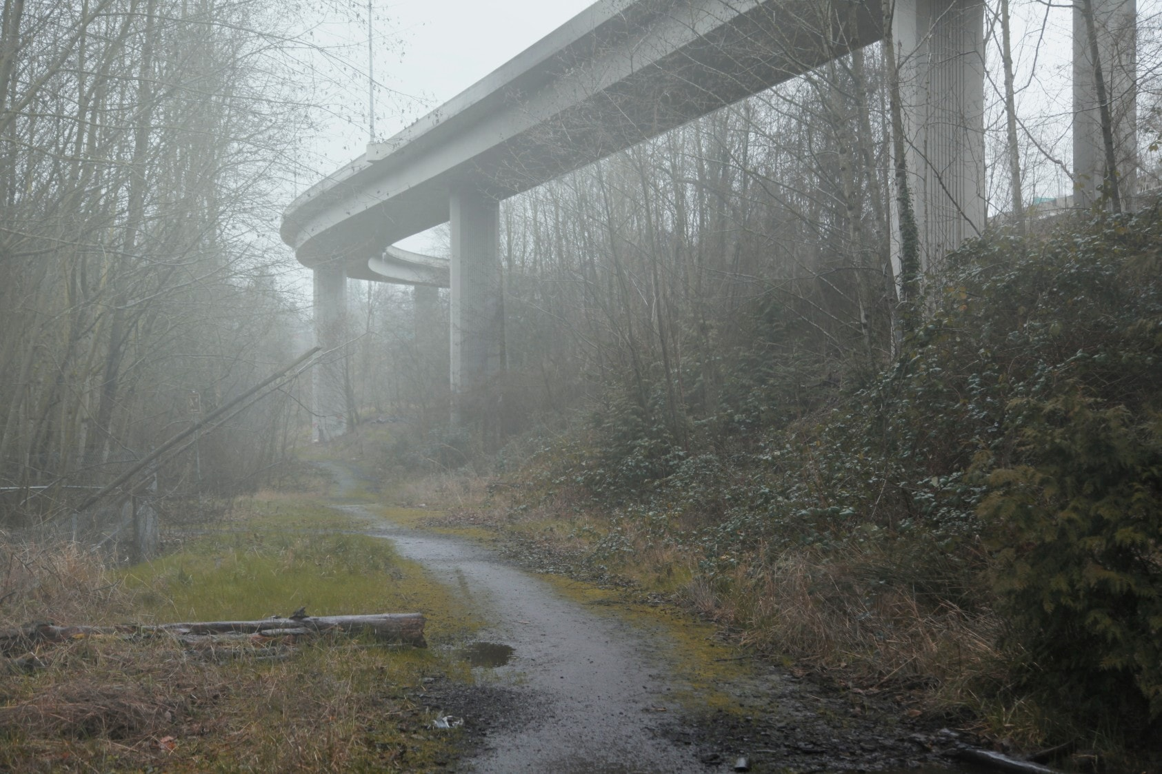 Desolation, Truth and Hazy Atmosphere – Fubiz Media Design