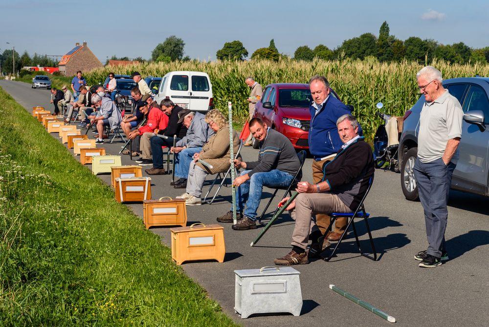 Vinkensport: Belgium's Competitive Bird Calling Photography